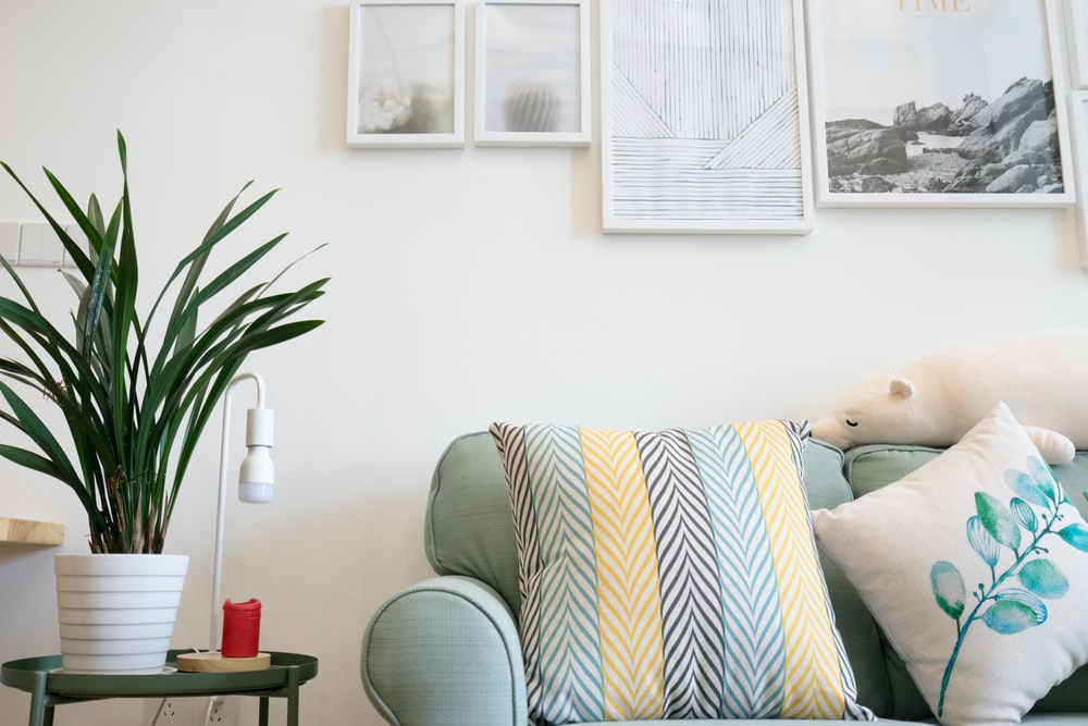 two assorted-color throw pillow on sofa beside potted plant