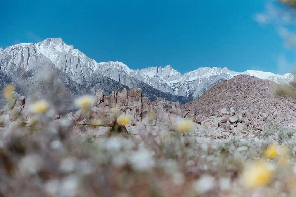 selective focus photography of rocky mountain during daytime