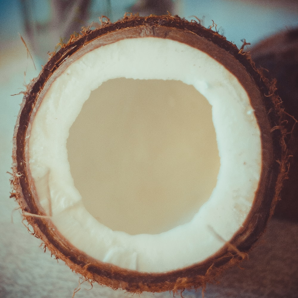 brown coconut shell