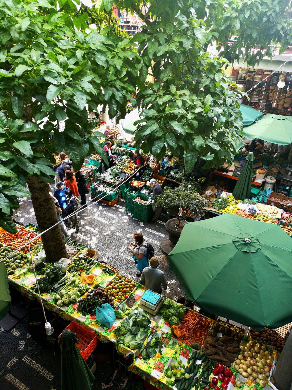 people standing near patio umbrella surrounded with fruits and vegetable stalls