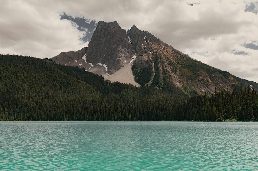 body of water near mountain alps