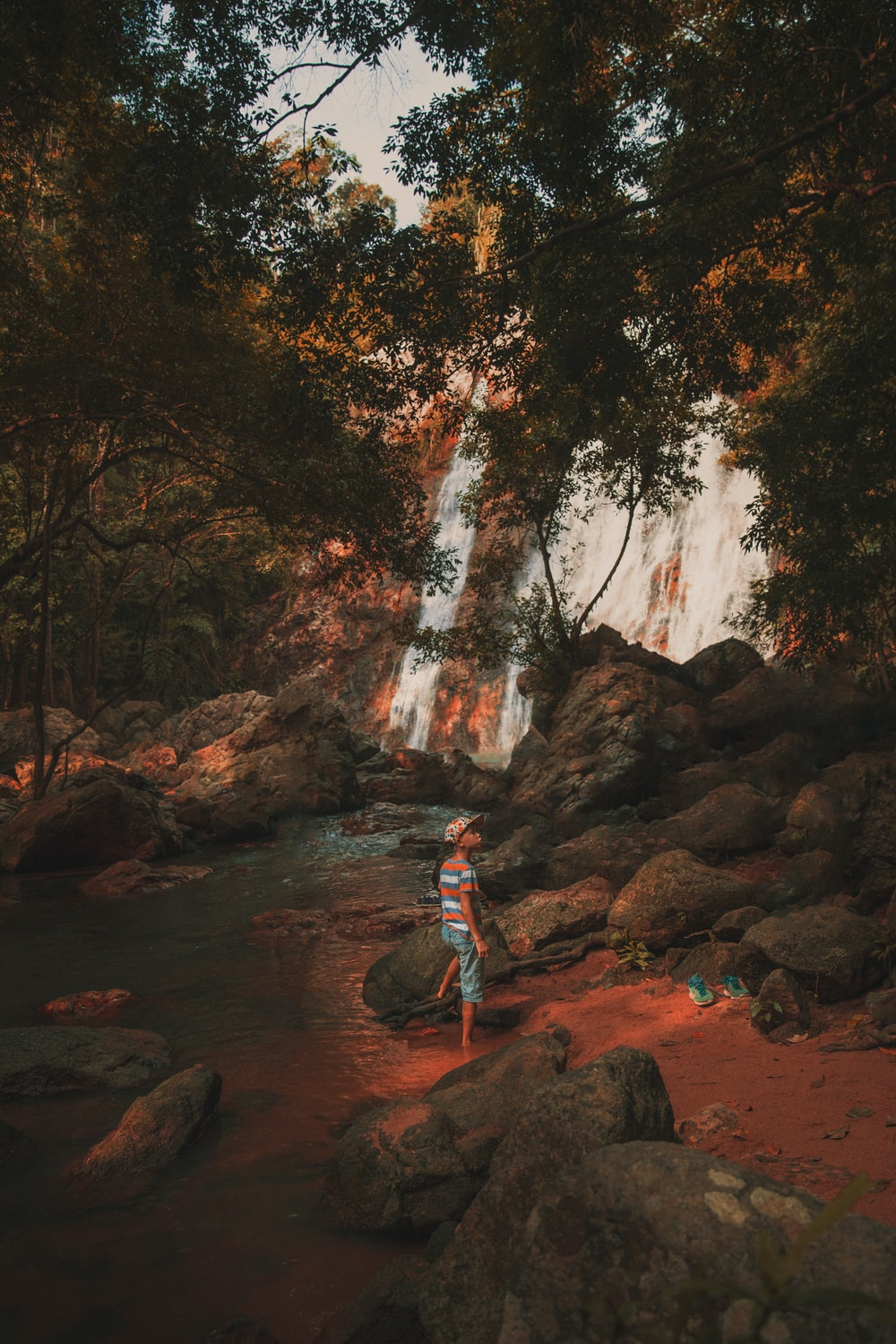 child standing under tree near waterfalls