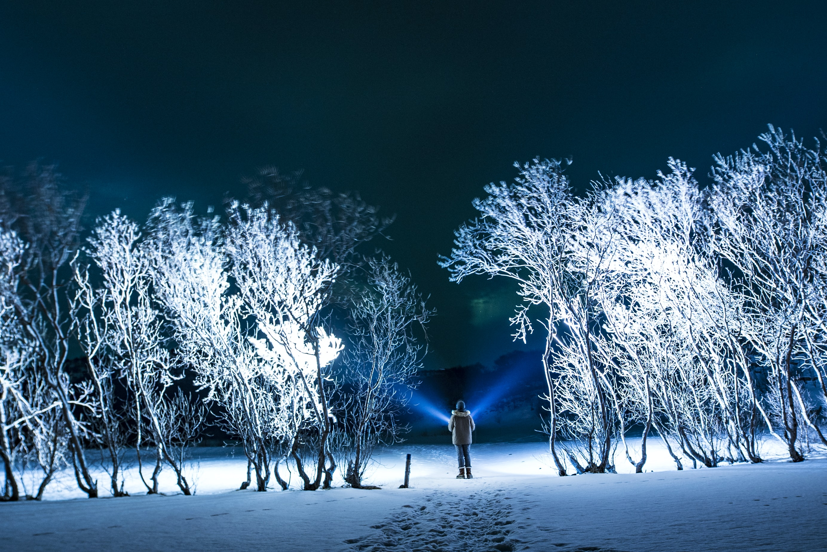 man standing beside snow covered trees outdoors