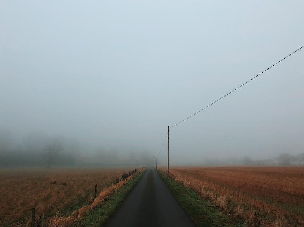 road near wheat field