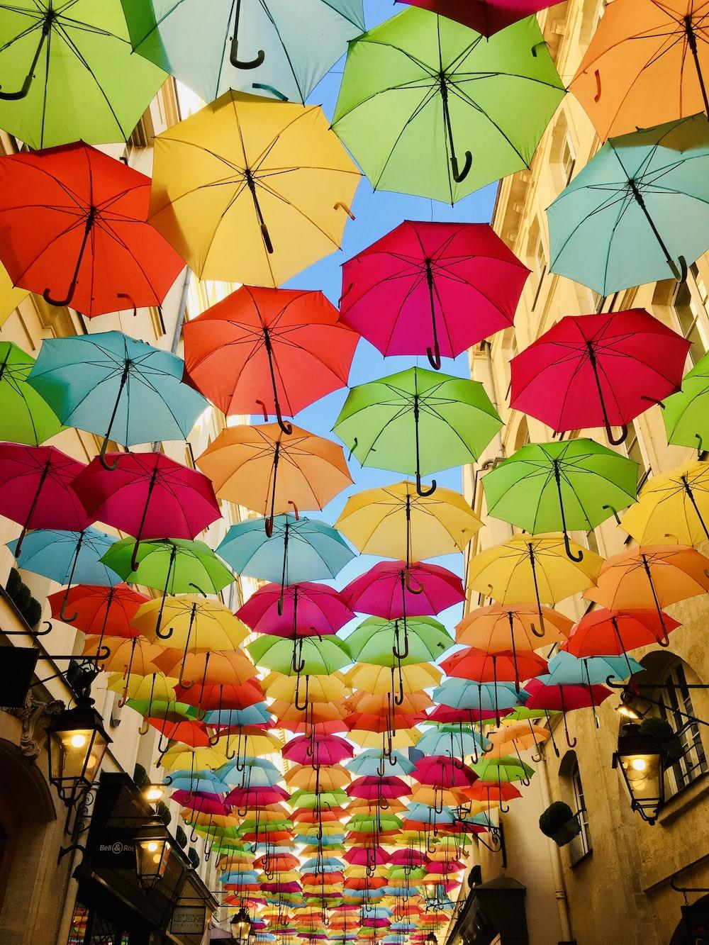 lot of umbrellas