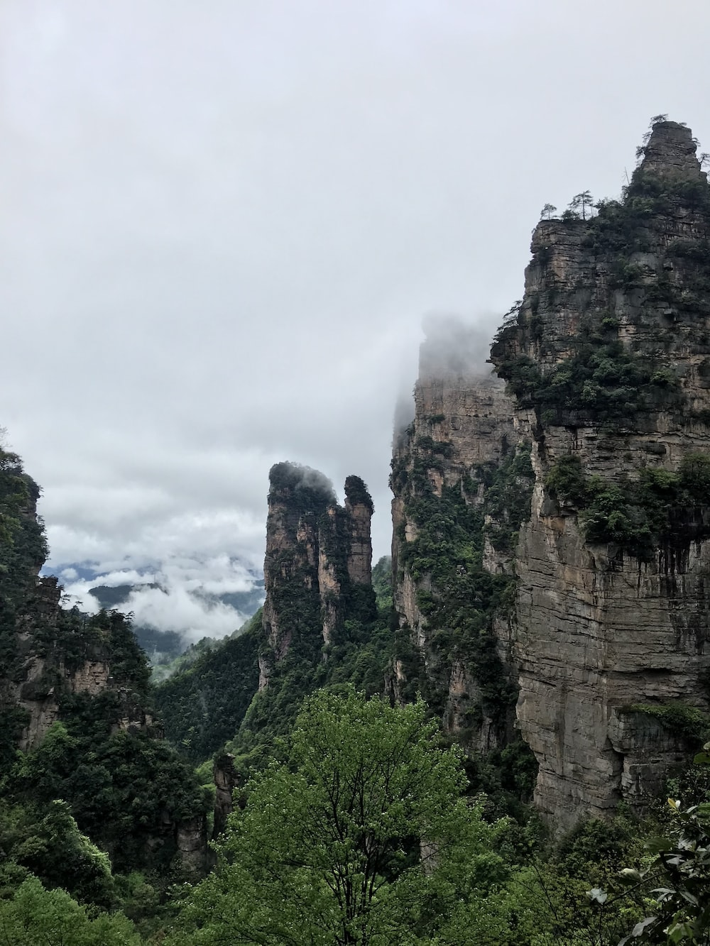 green covered rock mountains