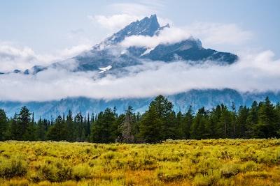 mountain peak yellowstone teams background
