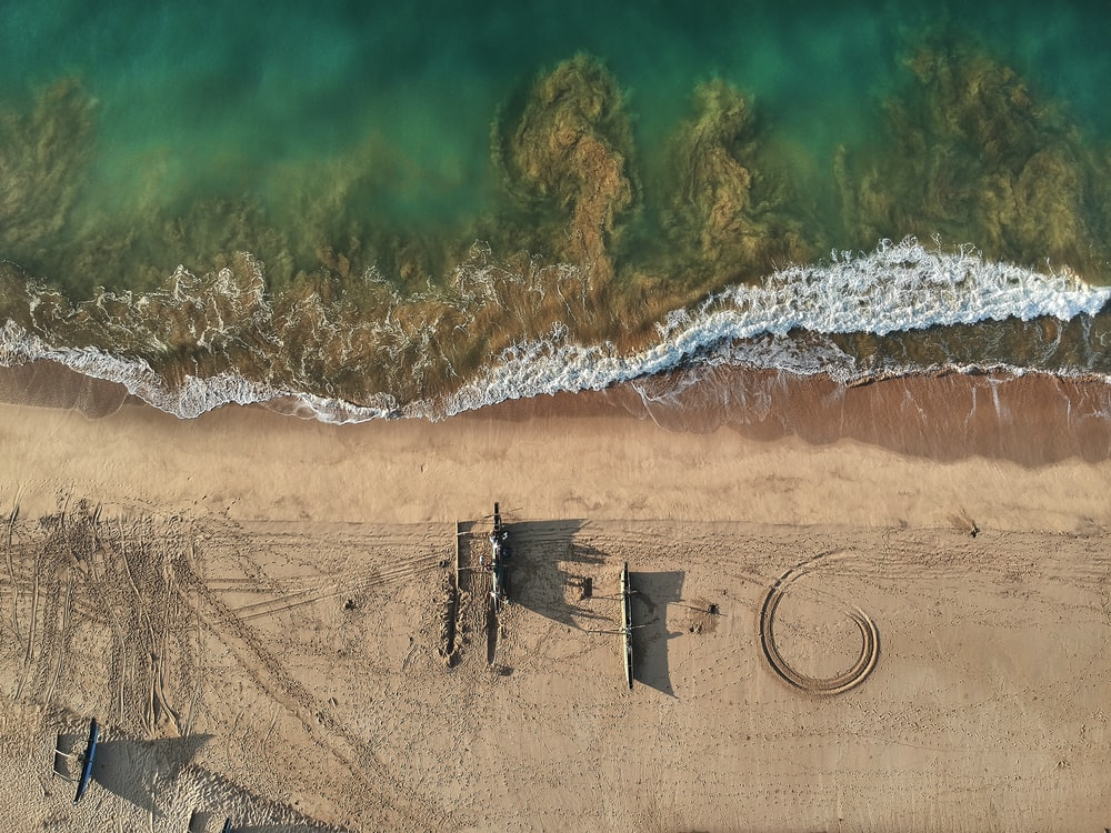 buildings on seashore in aerial photography