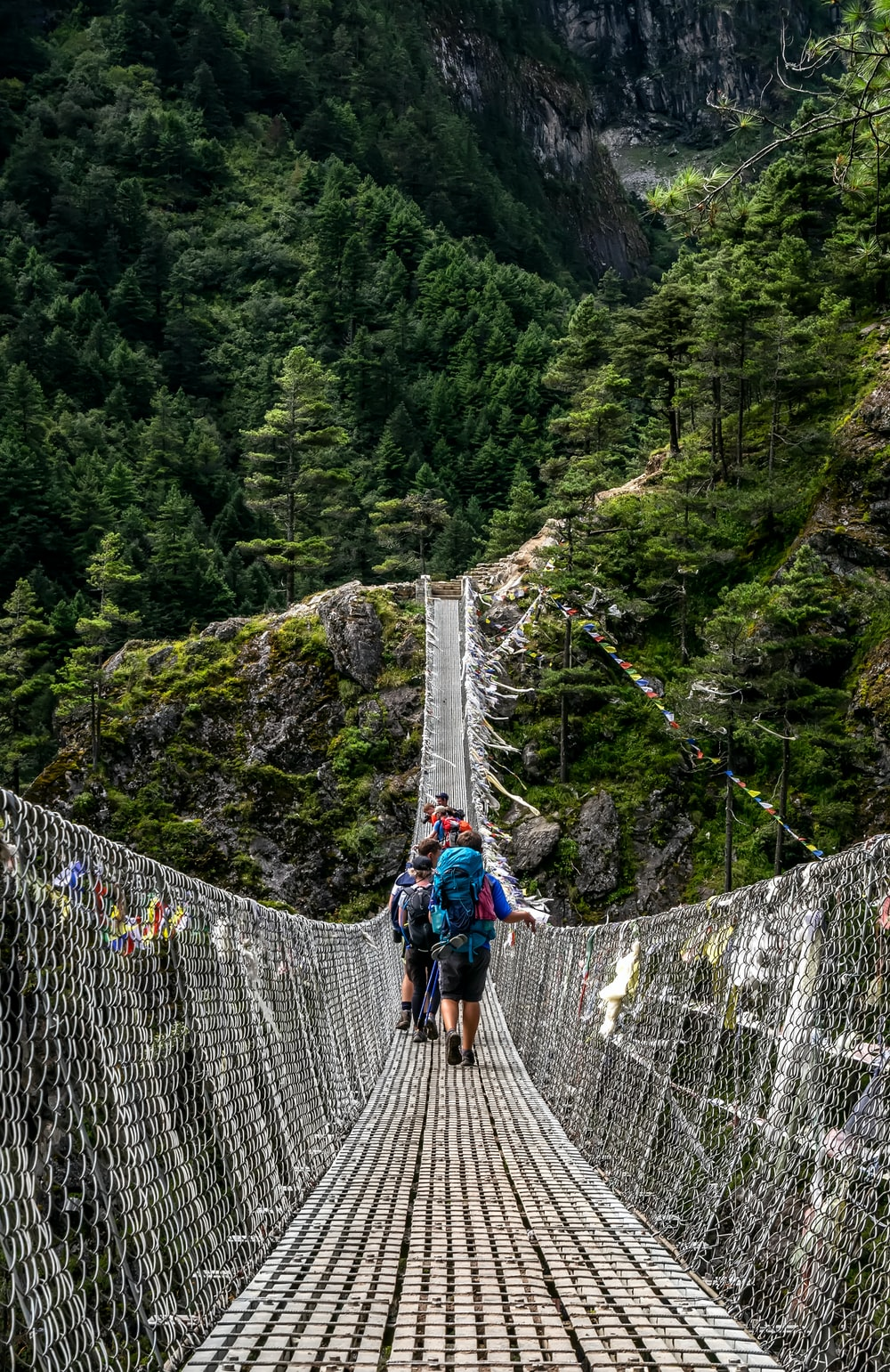 people walking on grey rope bridge during daytime