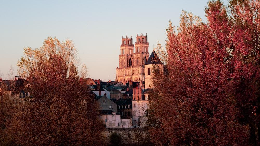 castle during daytime