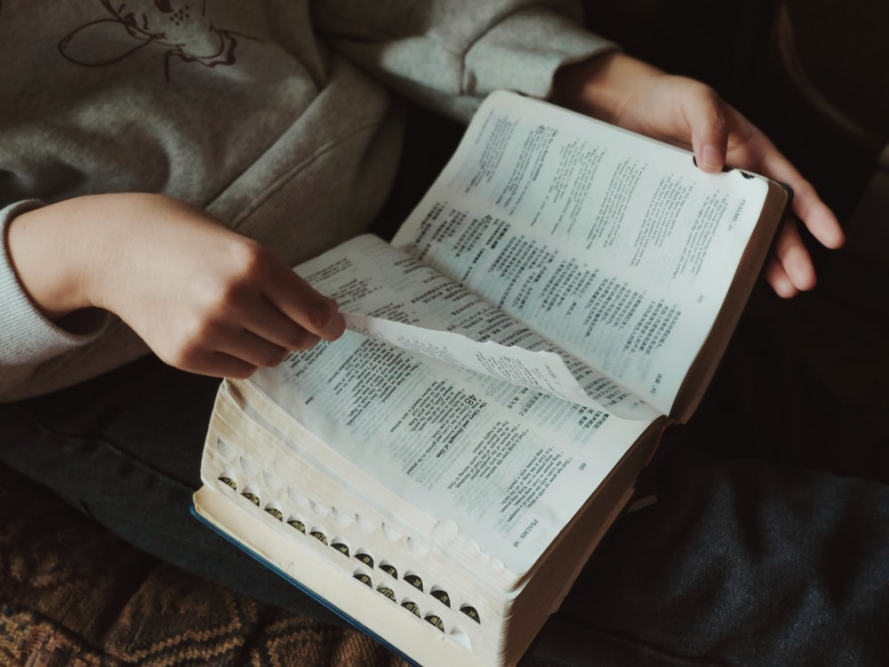 person holding book