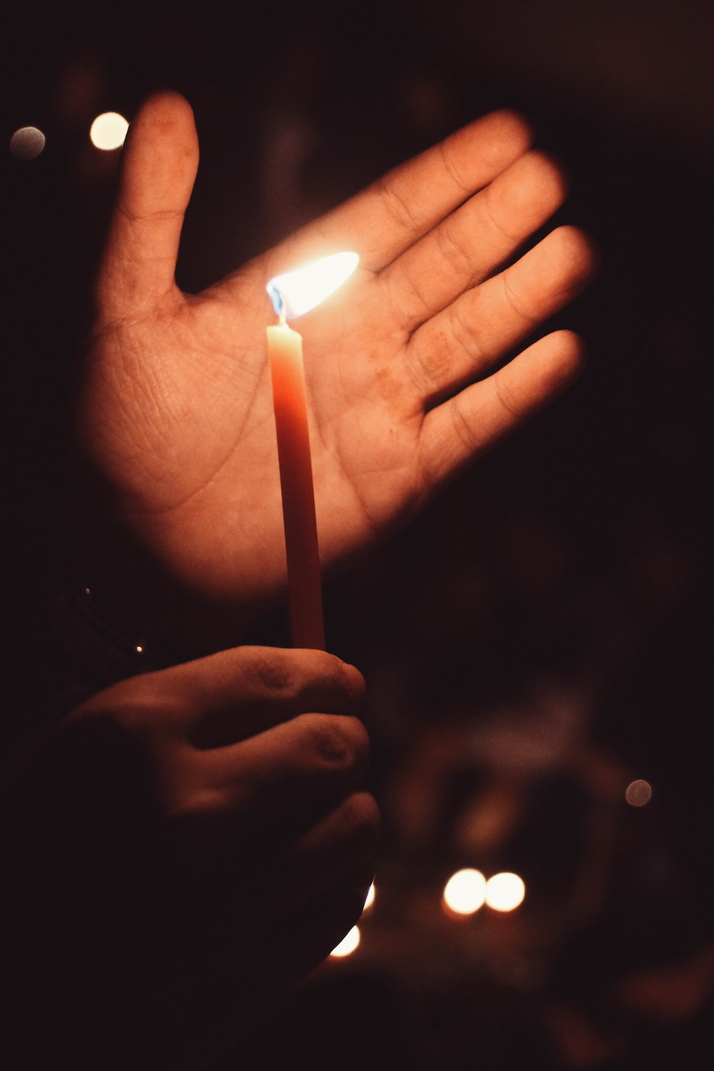 person holding lit candle near palm