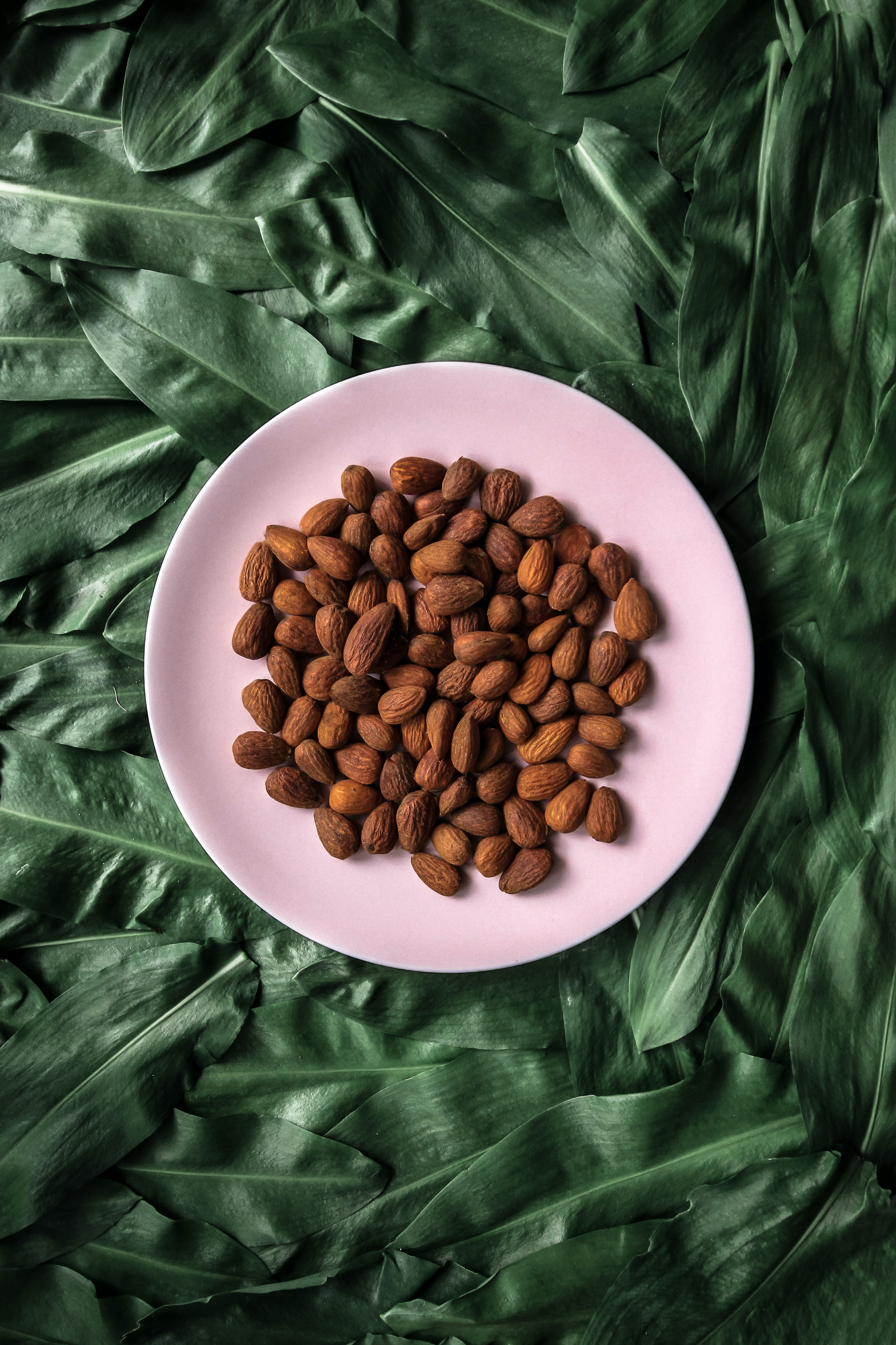 brown walnuts on white ceramic plate