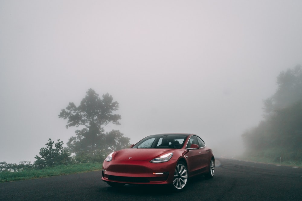 red car parked near trees during foggy weather