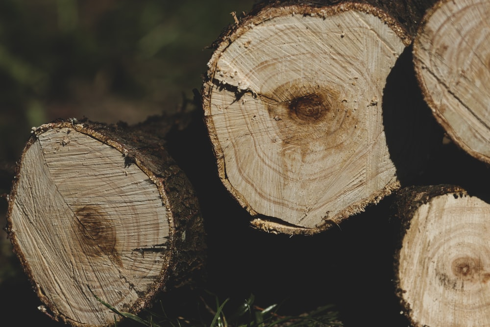 four brown logs