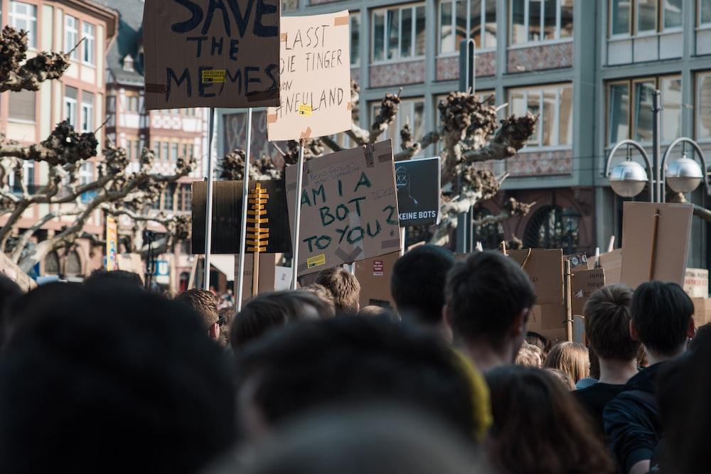 people rallies during daytime