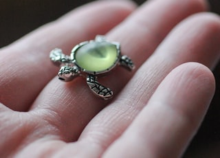 gold-colored turtle ring