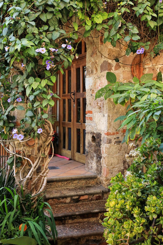 open door close-up photography