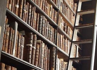 wooden ladder by bookshelves