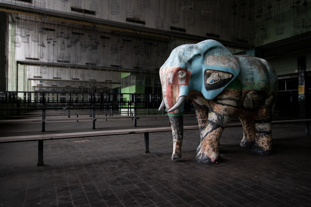 blue and brown elephant statue in building