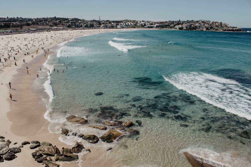 500 Beautiful Bondi Beach Pictures Australia Hd Download Free Images On Unsplash