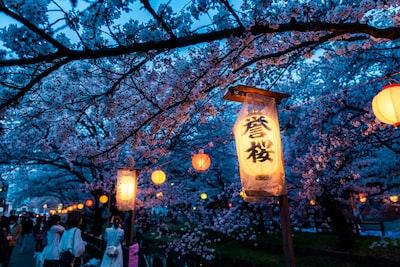 beige and black lamp on green tree during nighttime sakura teams background