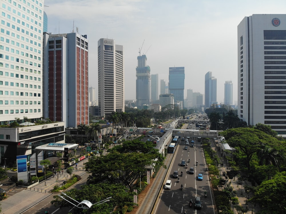 vehicles on roadway between high rise buildings