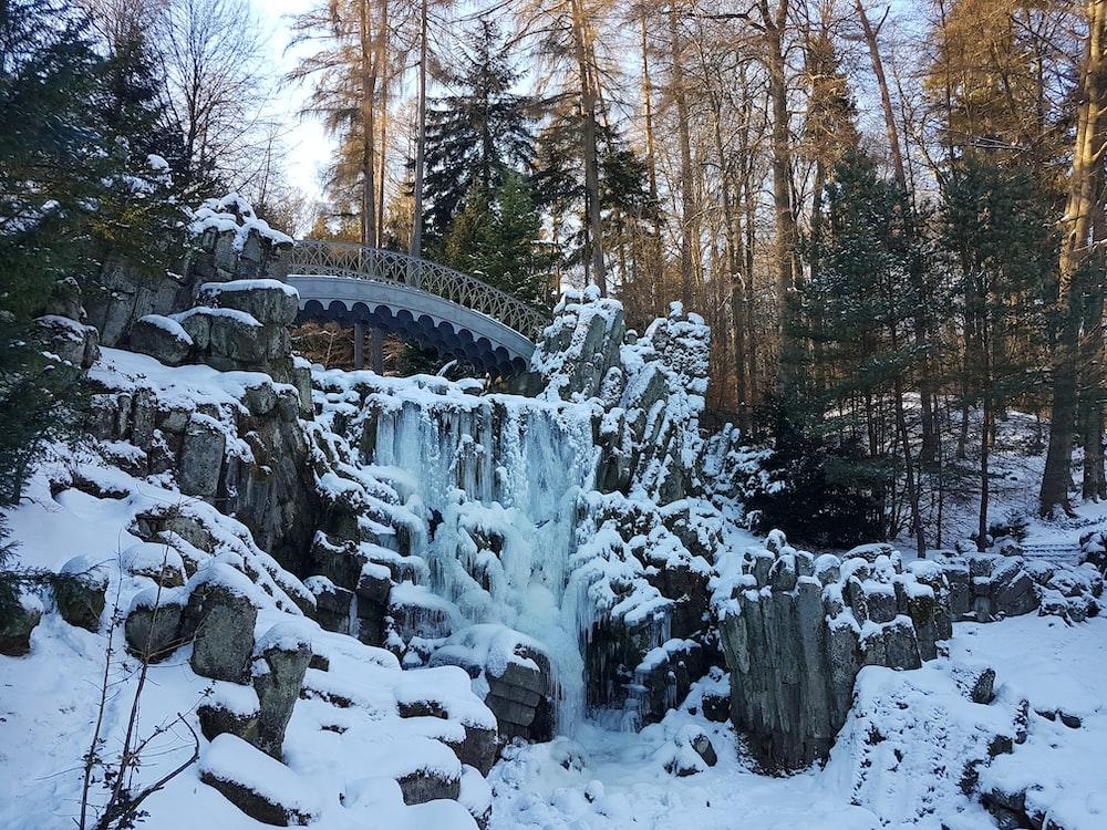 bridge near trees during snow