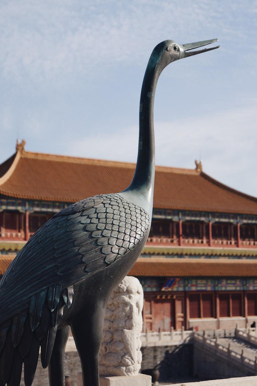 black bird statue