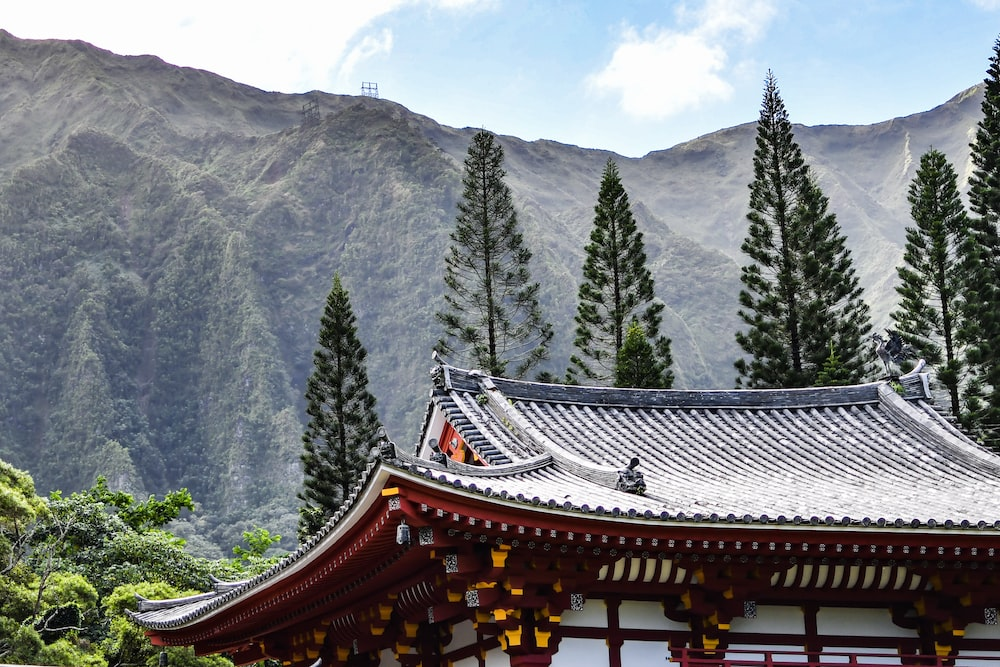 pagoda temple surrounded by pine trees