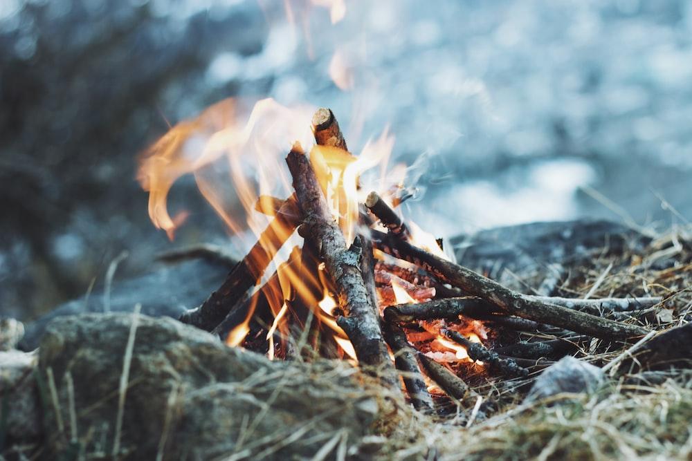 bonfire on ground