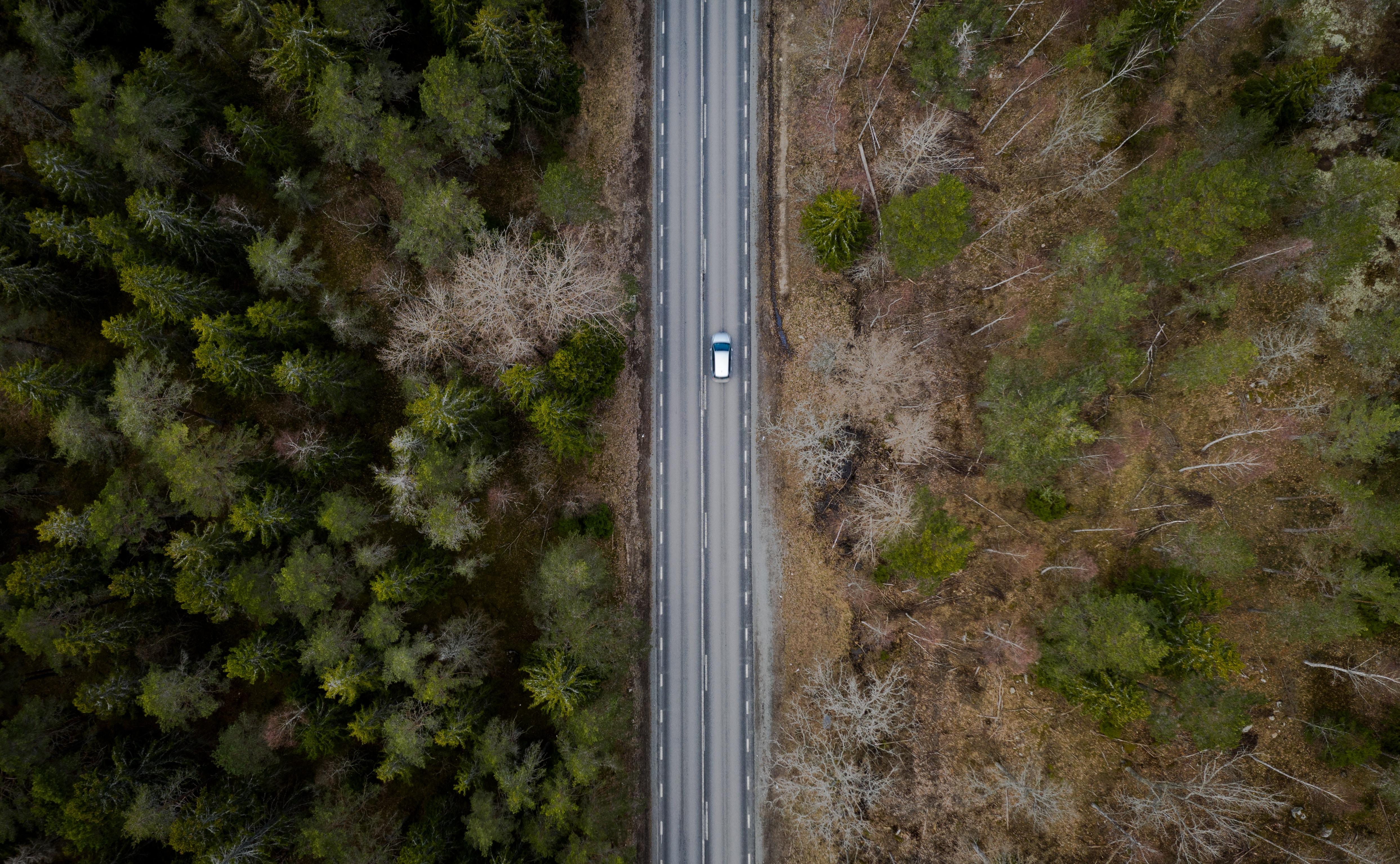 aerial photo of concrete road