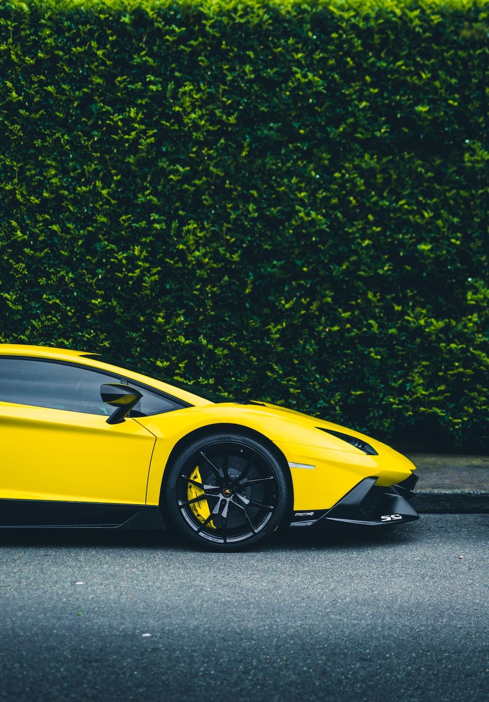 yellow Lamborghini coupe parked beside bush