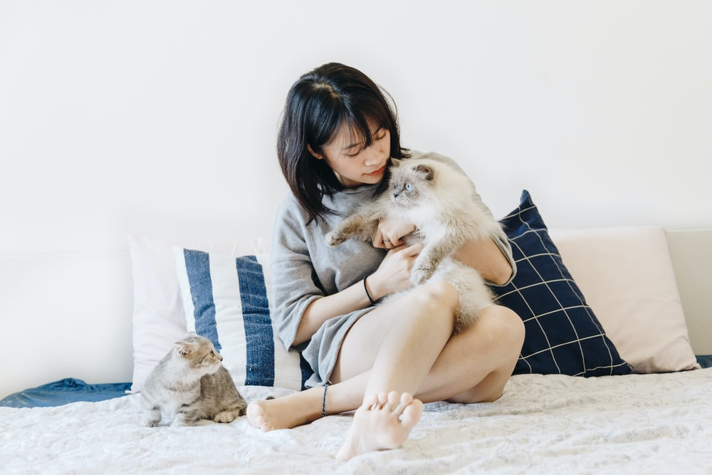 woman holding cat beside another cat