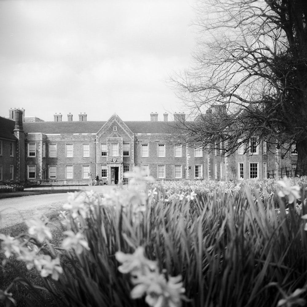 grayscale photography of flower garden in front of mansion