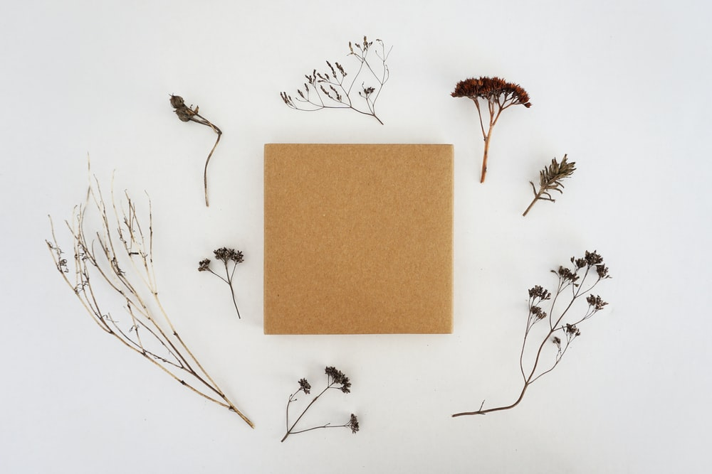 corkboard surrounded by flowers