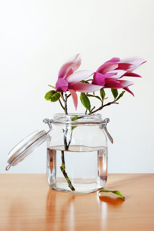 pink petaled flowers in clear glass mason jar