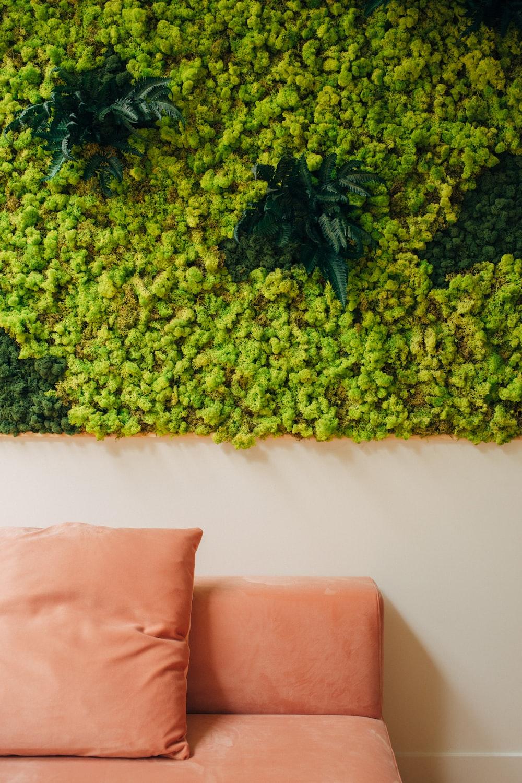 sofa chair near plant