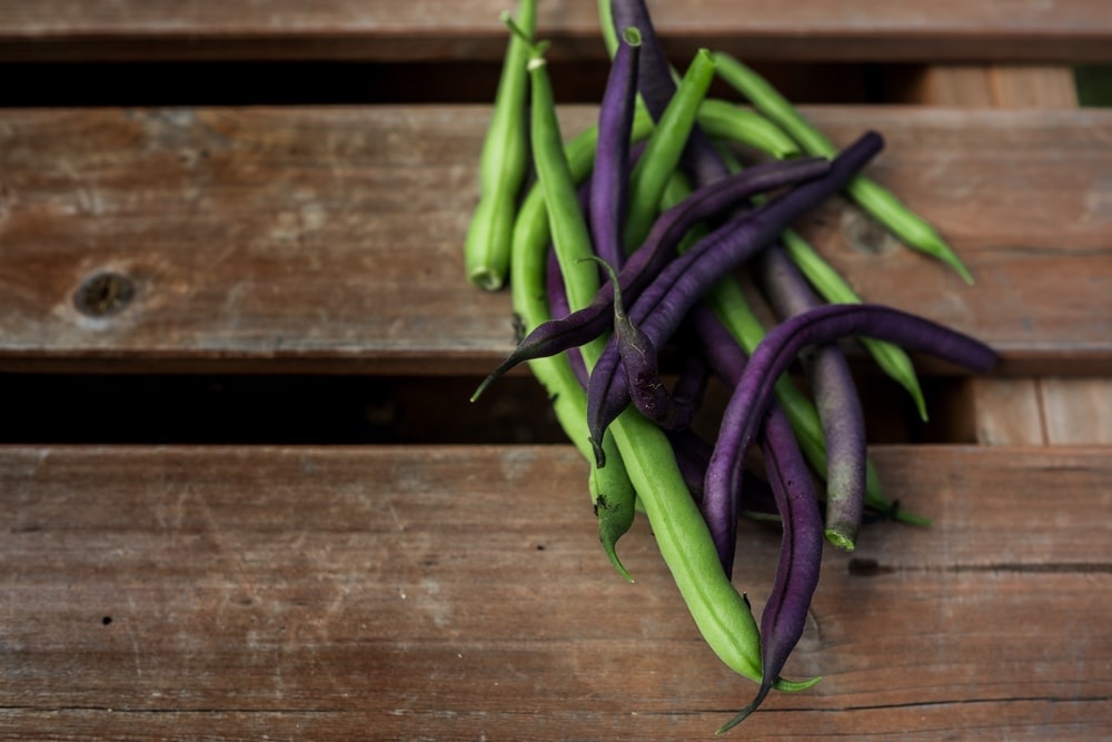red and purple string beans