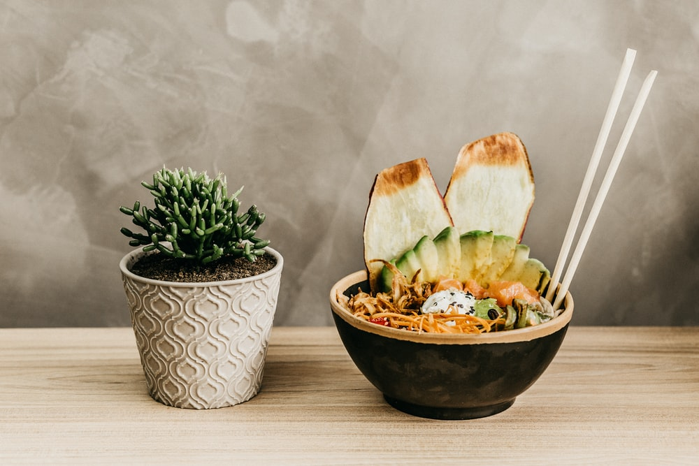 green succulent plant in pot near bowl of food