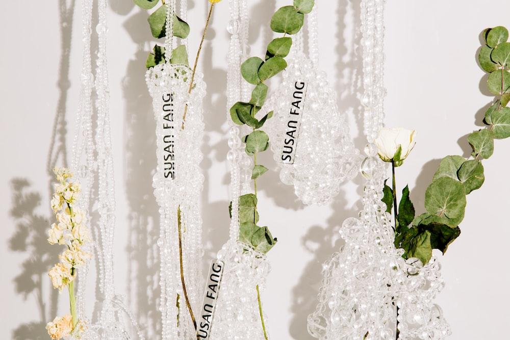 Susan Fang labeled plants
