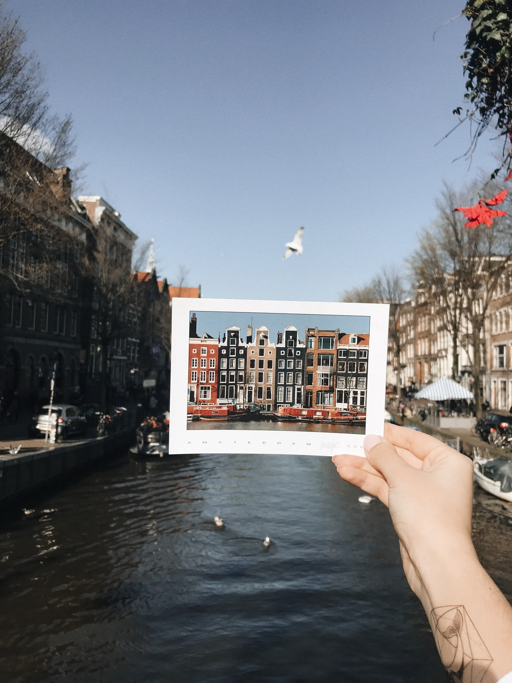 person holding buildings photo