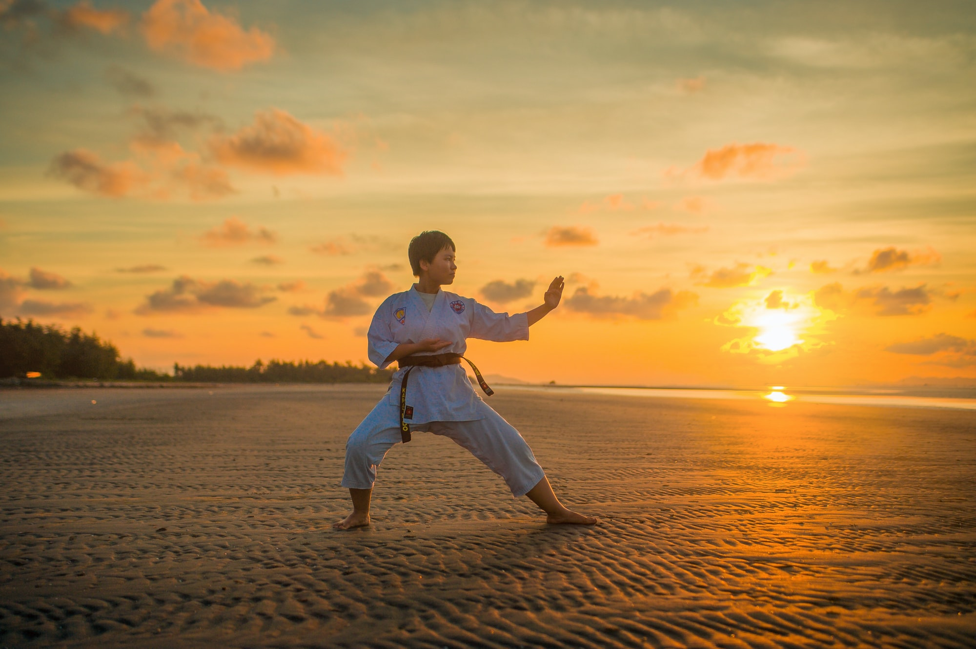 Is Karate a Vehicle for Philosophy?