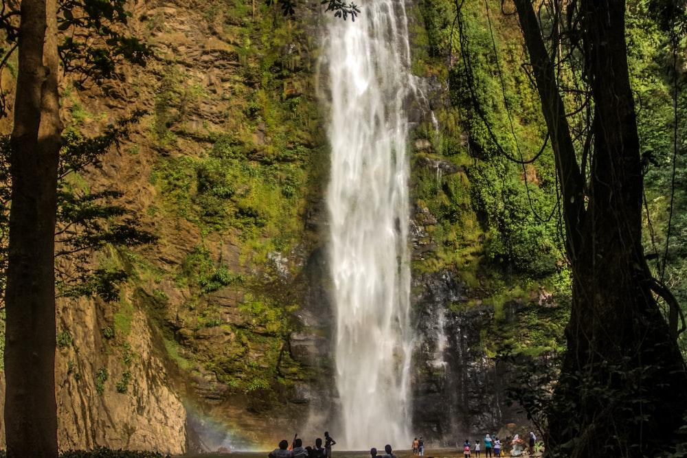landscape photo waterfalls during daytime