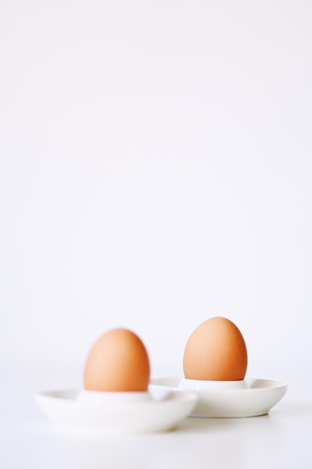two brown eggshells