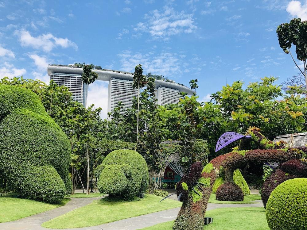 green hedges near Marina Bay Sands