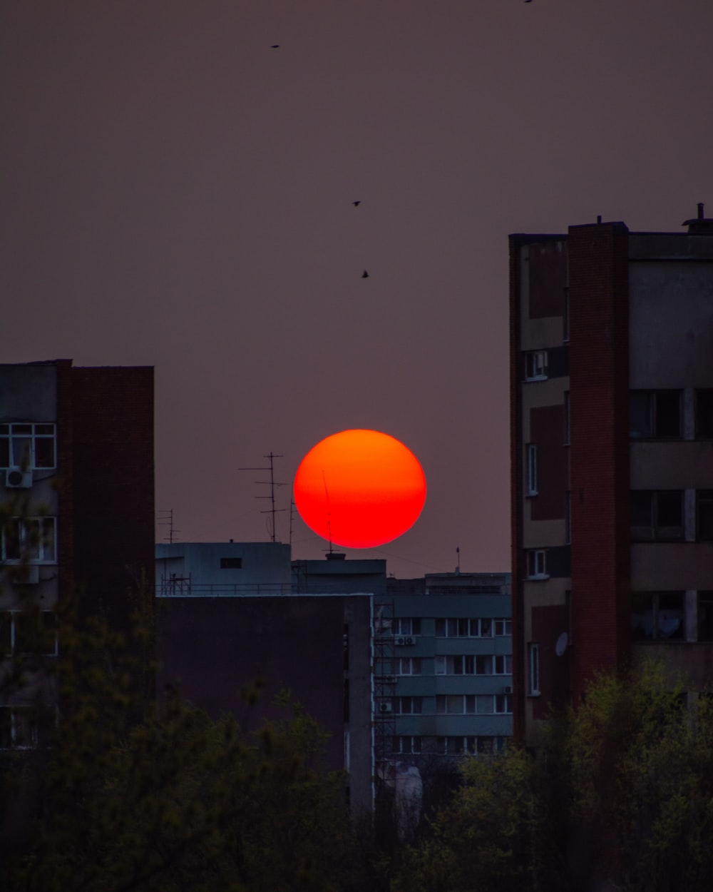 yellow and orange moon through buildings
