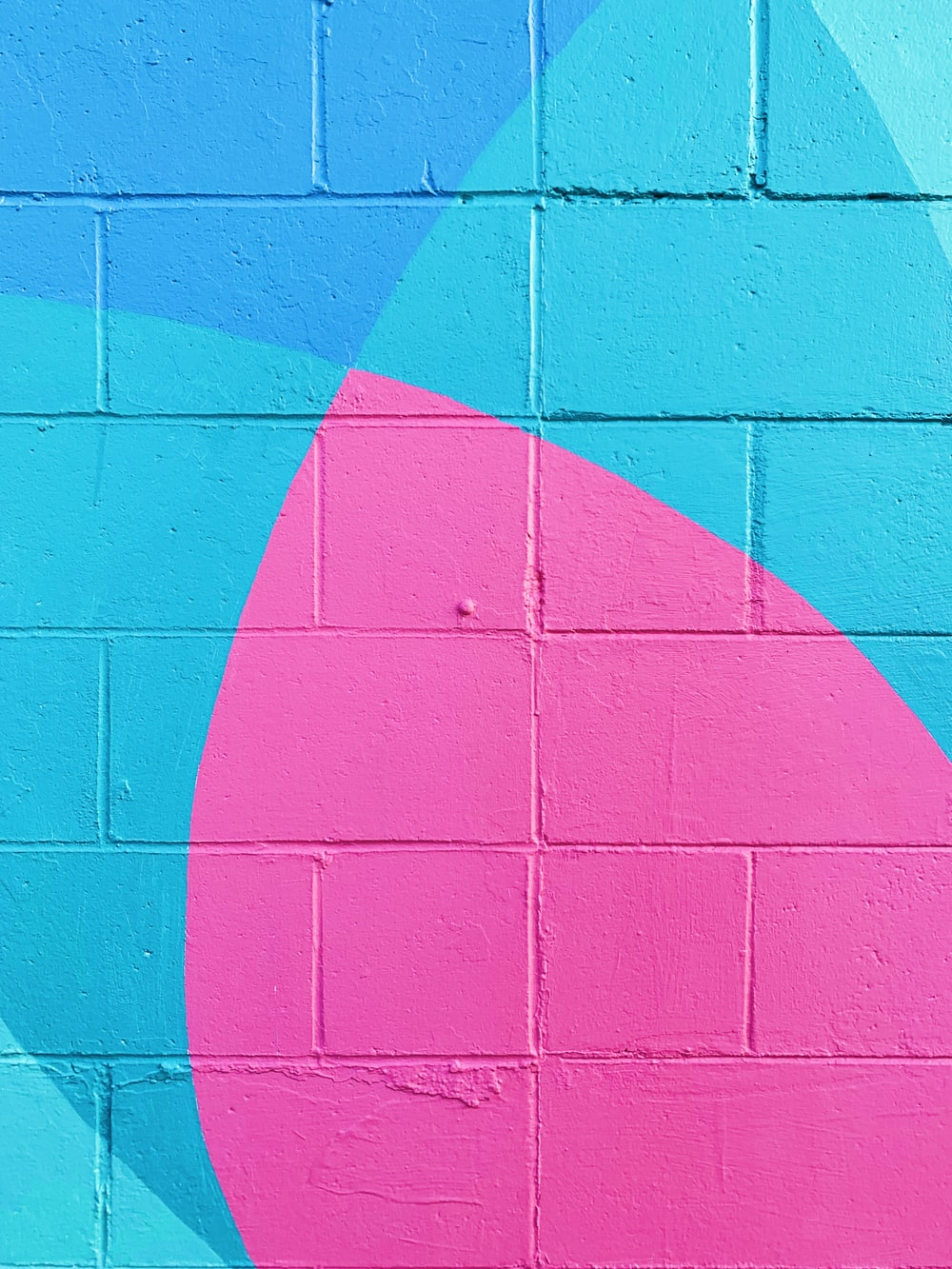 closeup photo of teal and pink wall