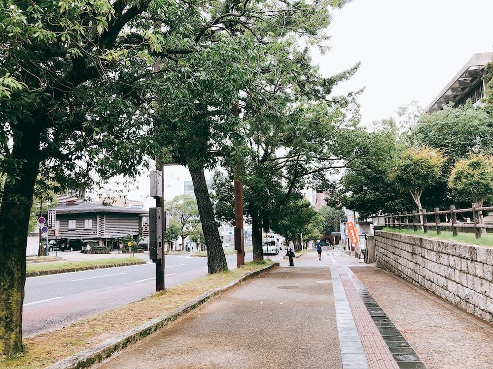 person walking beside street