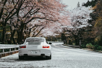 white coupe parked near tree porsche teams background